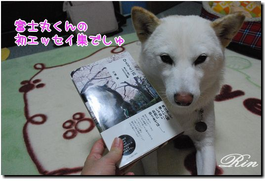富士丸くんの本でしゅ