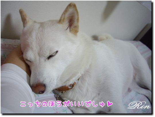 ママの腕枕~♪