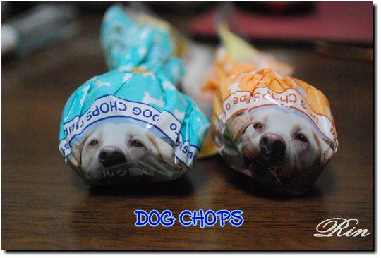 DOG CHOPS!!
