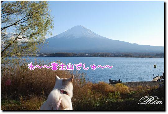 わ~~富士山だ~~