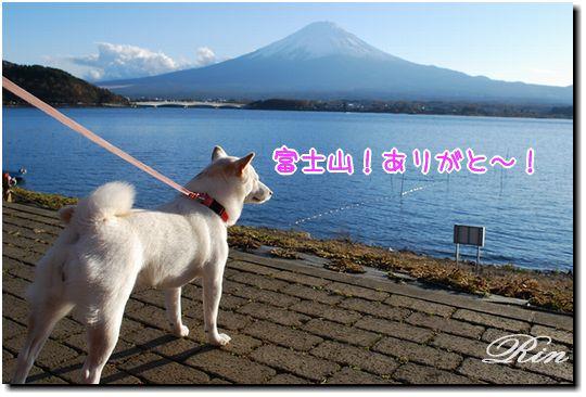 富士山!ありがと~~