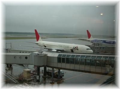 空港 朝の風景