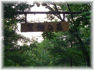 森 入り口
