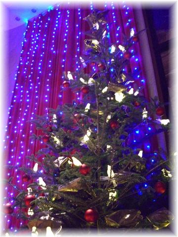 20081212 クリスマスツリー-1