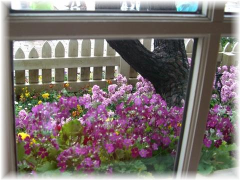 20090131 シー 07 クックオフ窓の外