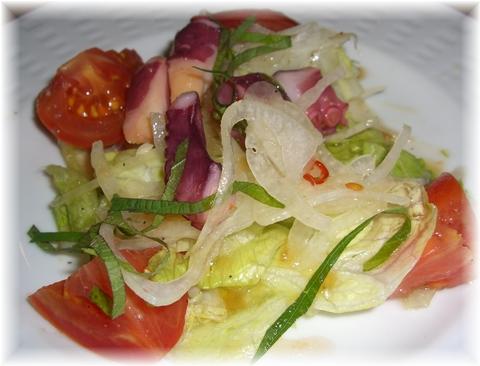 20090405 ココス サラダ