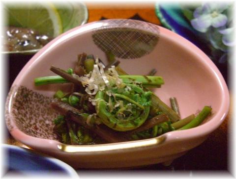 20090417 魚井 山菜