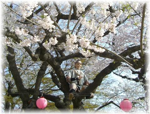 20090419 えぼし山 花咲かじいさん