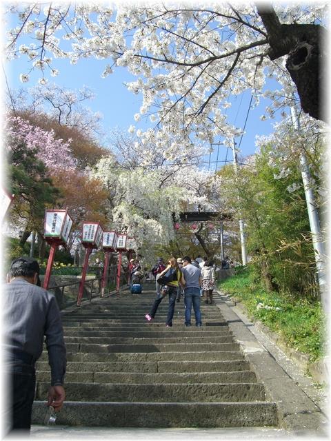 20090419 えぼし山 2