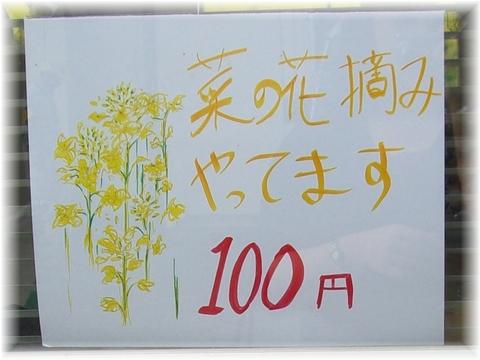20090503 15 菜の花摘み