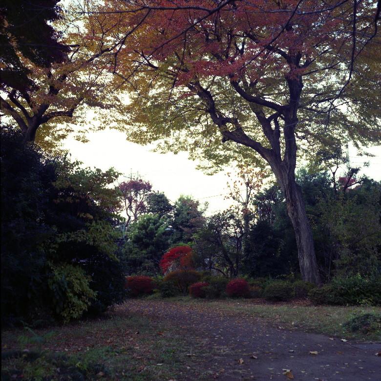 2007120705_1.jpg