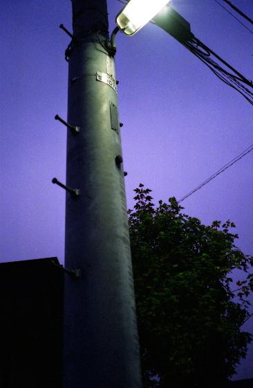 2007122106_1.jpg