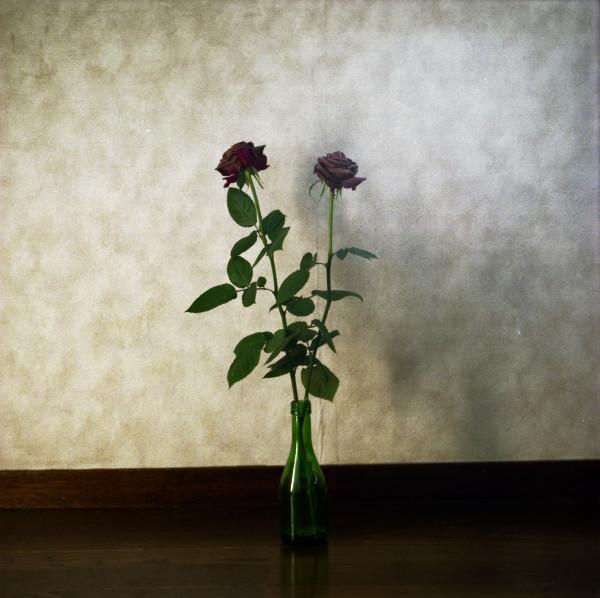 2008031701_1.jpg