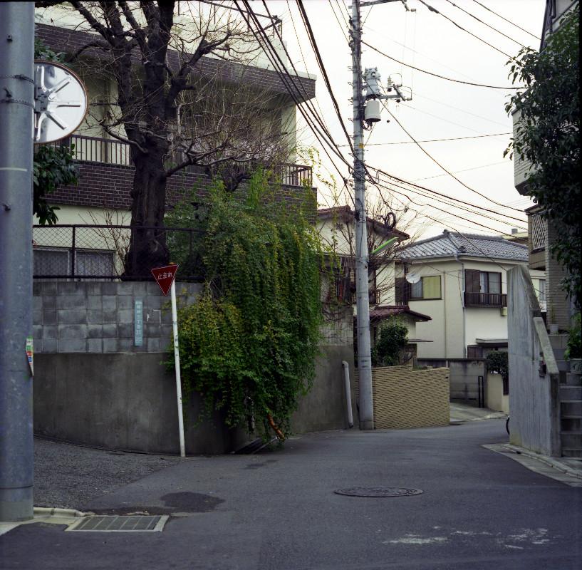 2008032701_1.jpg