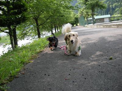 みっさまと長滝2009.6.8 006