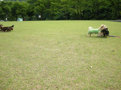 みっさまと長滝2009.6.8 001