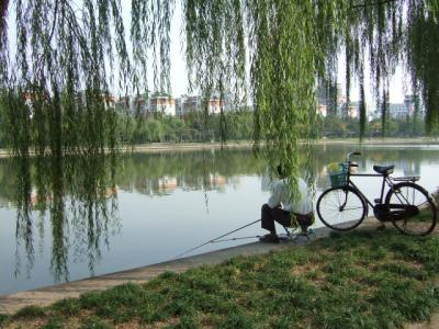 杭州で釣りを楽しむ人々①