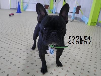 10_20120224204153.jpg