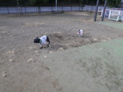 11_20120108111026.jpg