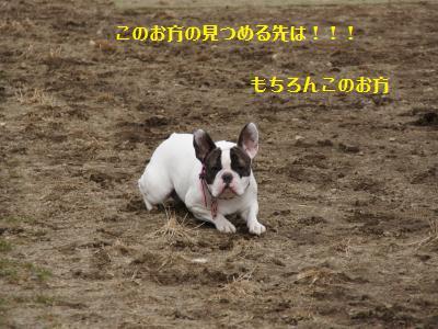 12_20120310215819.jpg