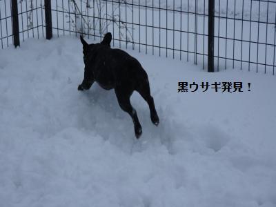 13_20120305130509.jpg