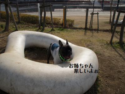 14_20120111163849.jpg