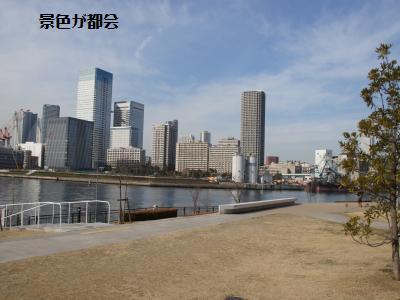 15_20120111163849.jpg