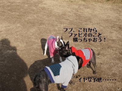16_20120111163849.jpg
