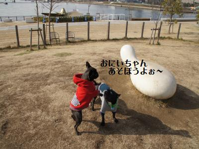 18_20120111163848.jpg