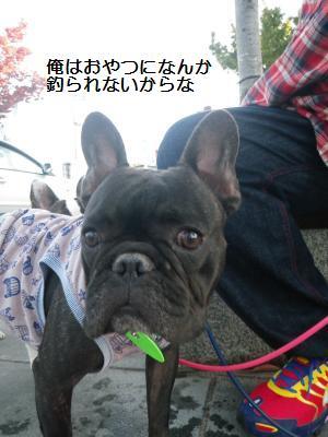19_20111018193805.jpg