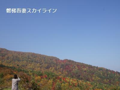 1_20111018193615.jpg