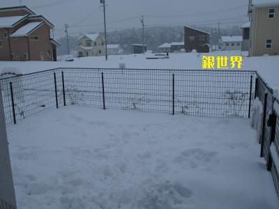 1_20120305130412.jpg