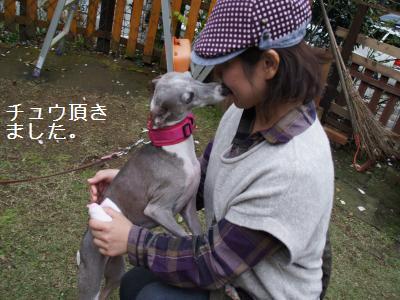 27_20111107160704.jpg