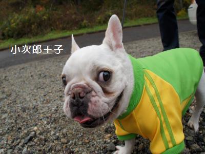 3_20111107160446.jpg