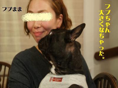 3_20111121102457.jpg