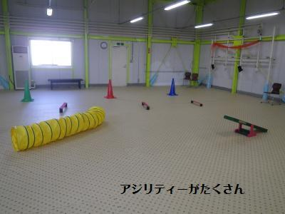 3_20120224204130.jpg