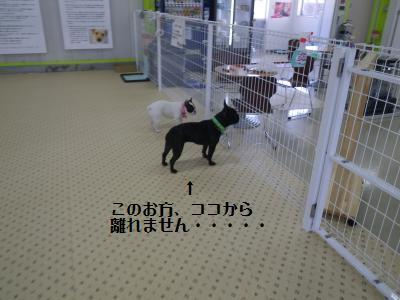 4_20120224204130.jpg