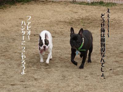 7_20120310215819.jpg