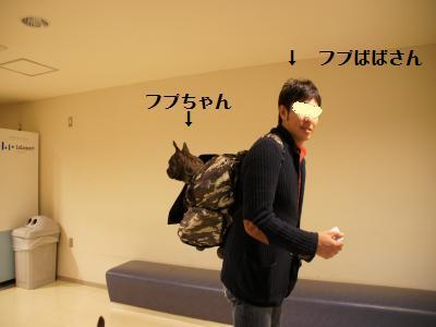 8_20120111163826.jpg