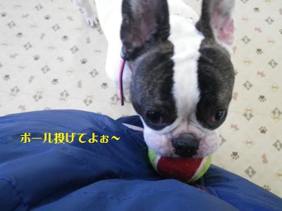 8_20120224204153.jpg