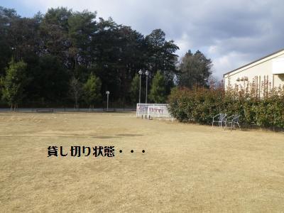 9_20120108111026.jpg