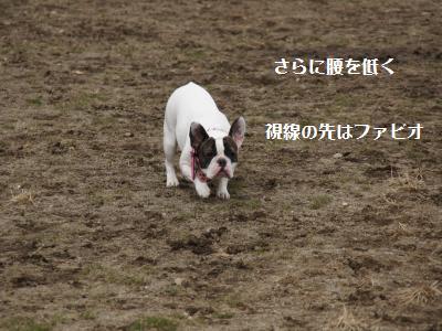 9_20120310215819.jpg