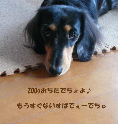 P1020791_edited-1.jpg