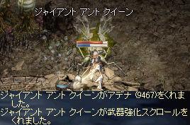 GAQ_20081217143122.jpeg