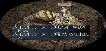 GAQ_20081224181503.jpeg