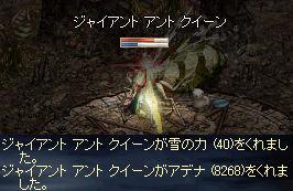 GAQ_20081226123440.jpeg