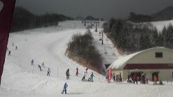 兵庫 ハチ北スキー場でウハウハ