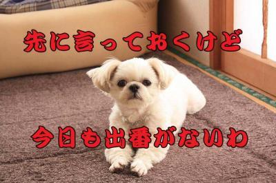 002_20090320225404.jpg