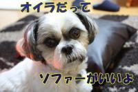 003_20081104173851.jpg