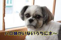 004_20081022142223.jpg